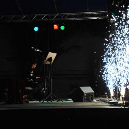 Oana Lianu - Concerte 24